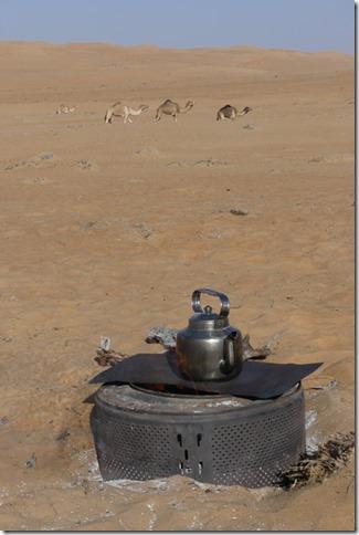 Dans le désert (163)