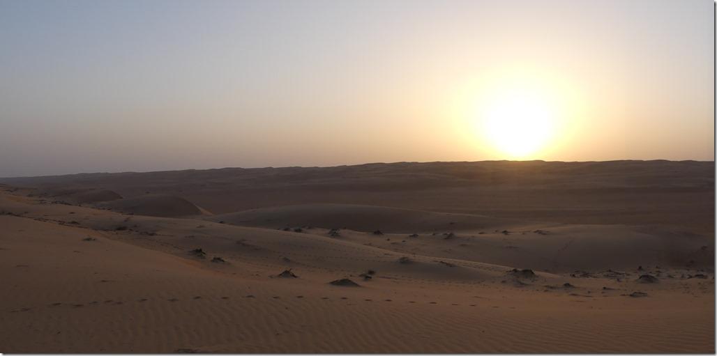 Dans le désert (36)