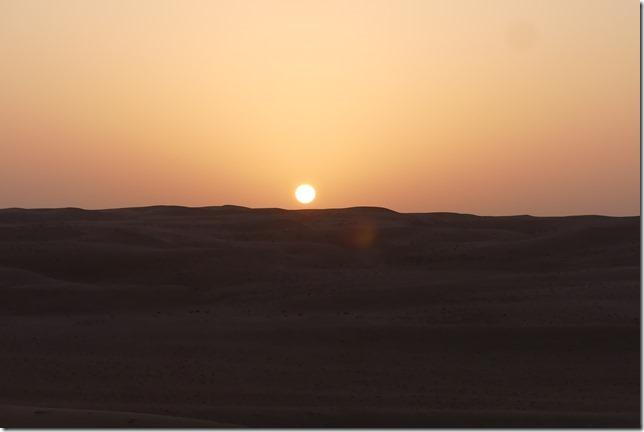 Dans le désert (40)