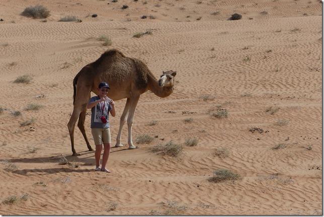 Dans le désert ! (55)