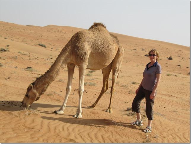 Dans le désert ! (60)