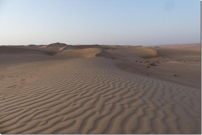 Dans le désert (73)