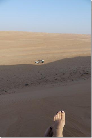 Dans le désert (80)