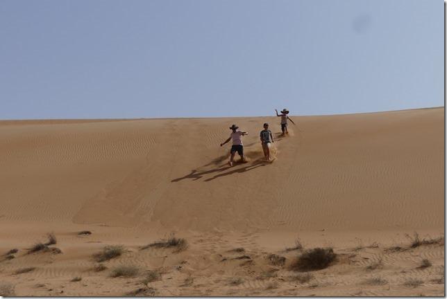 Dans le désert ! (88)