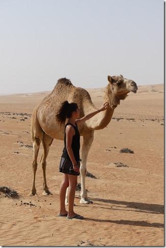 Dans le désert (96)