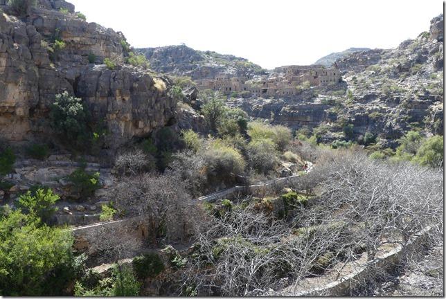 Djebel Akdhar (22)