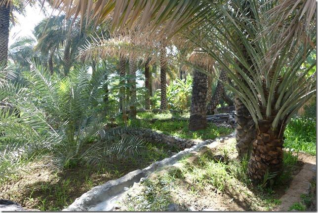 Village de Misfat (16)