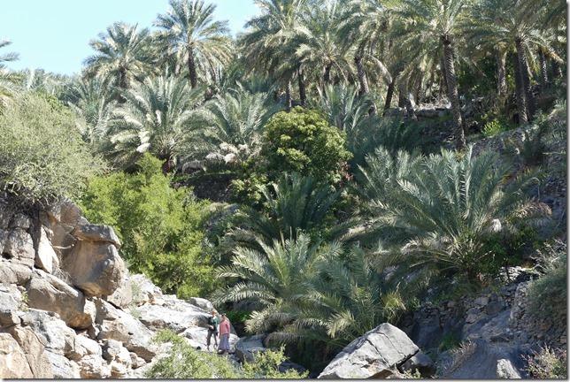 Village de Misfat (27)