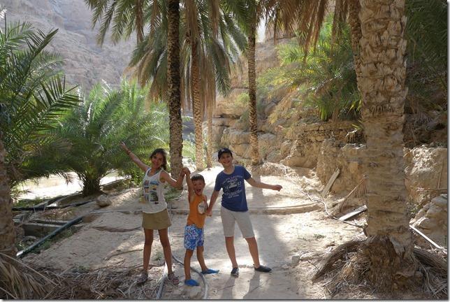 Wadi Shab (26)