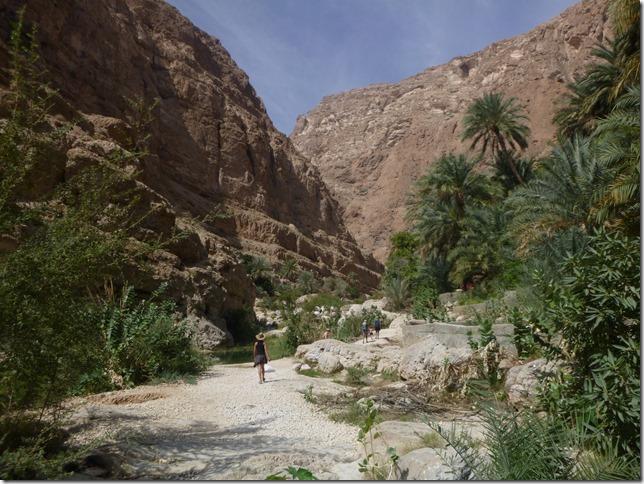 Wadi Shab (3)