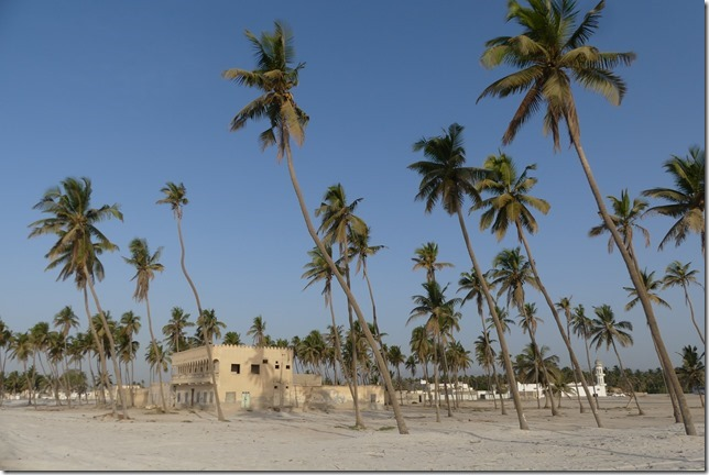 Salalah beach (13)
