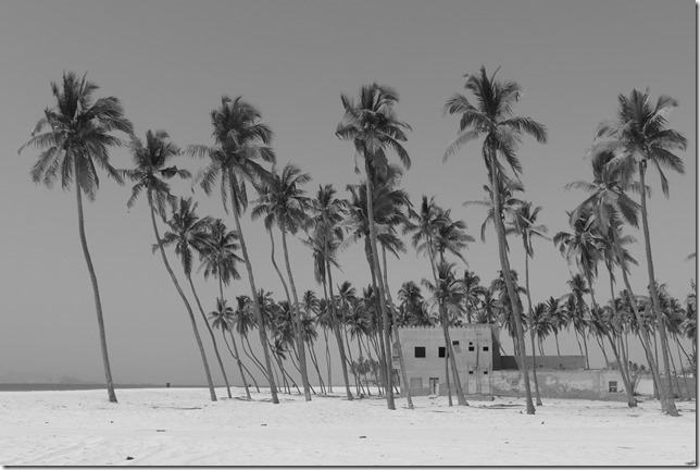 Salalah beach (20)
