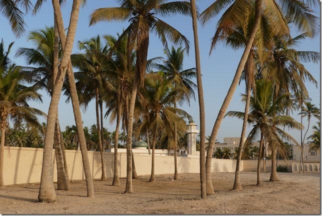 Salalah beach (7)