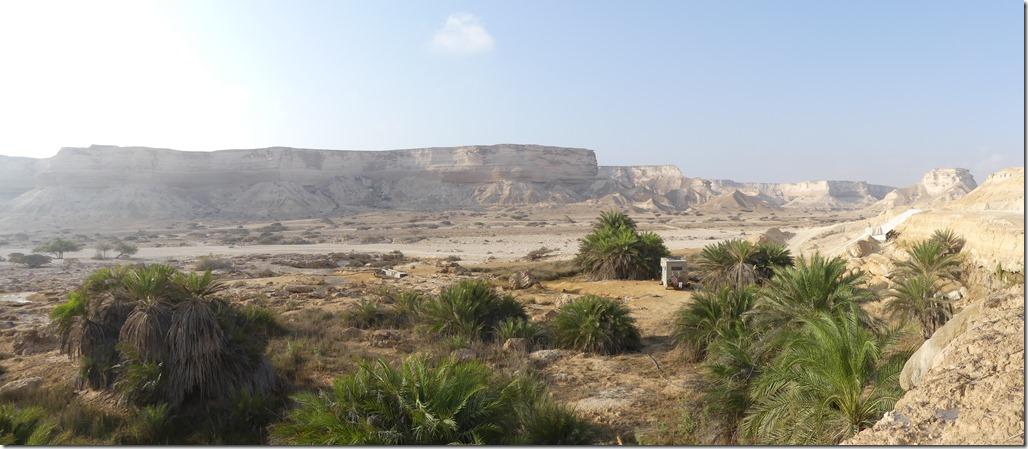 Wadi Shuwaymiyyah (20)