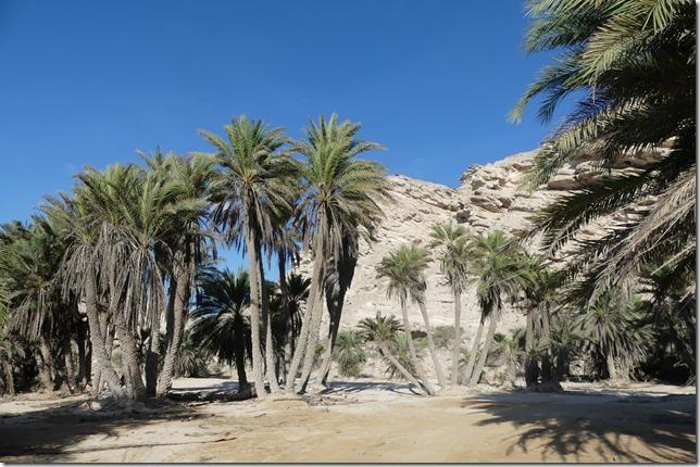 Wadi Suneik (1)