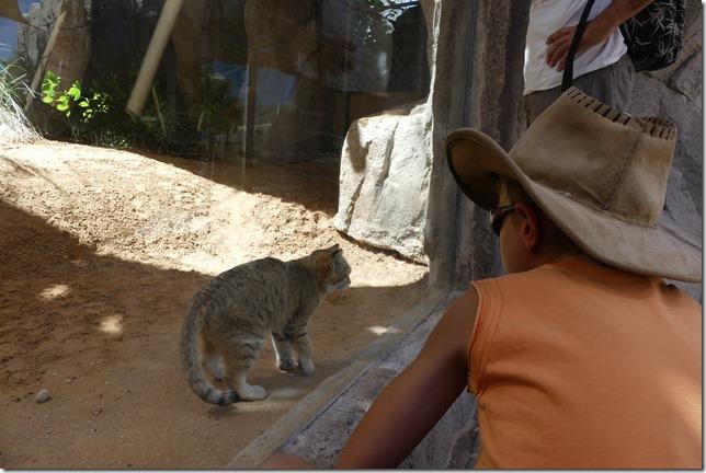 Zoo Al Ain (122)
