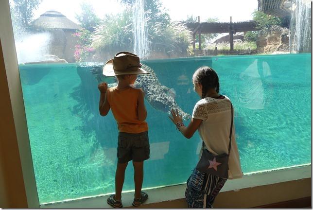 Zoo Al Ain (48)