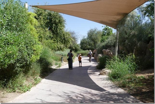 Zoo Al Ain (78)