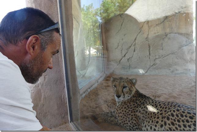 Zoo Al Ain (84)