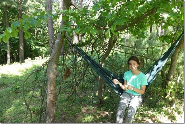 Dans la forêt (8)