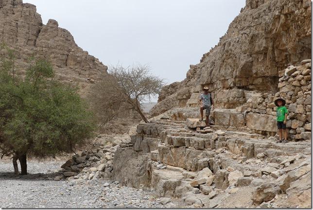 Djebel Jais (38)