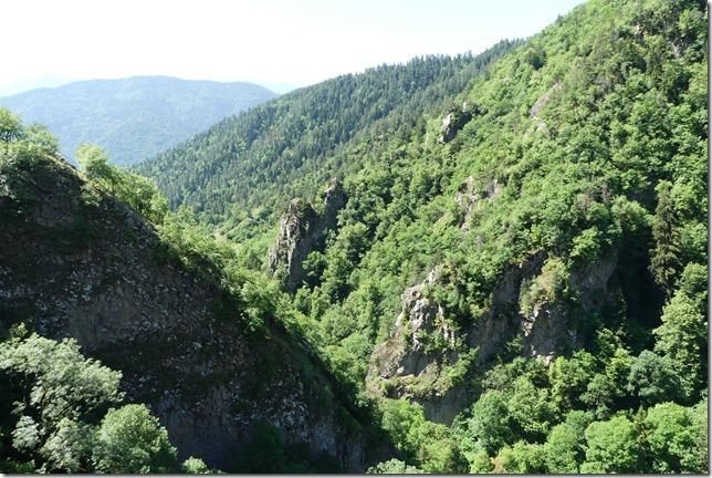 Borjomi Kharagauli National Park (13)