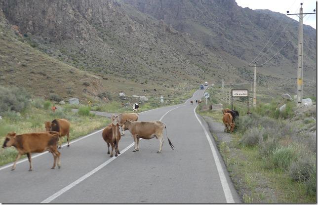 Sur la route - frontière Azerbaïdjan (10)