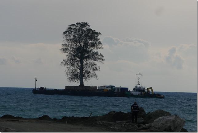 Côte de la mer Noire (13)