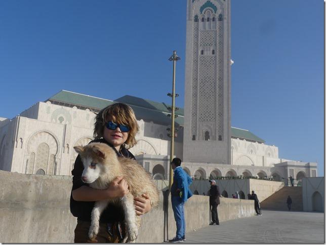 Casablanca (32)