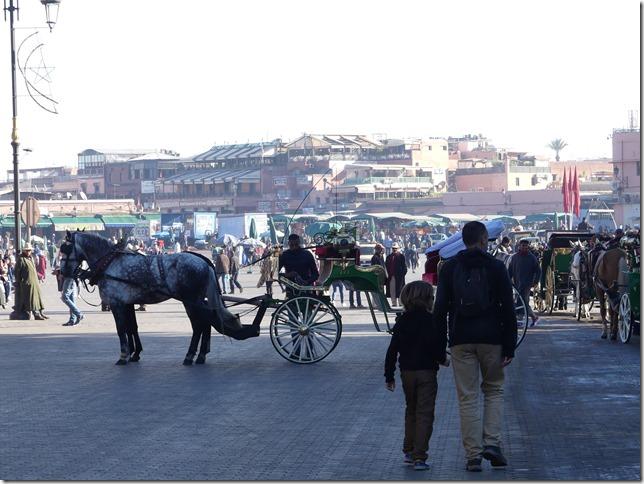 Marrakech (37)