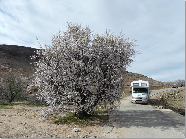 Route Tafraout-Aït Mansour (11)