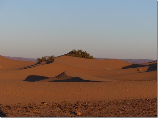 Vallée du Draa - Mhamid- Mbark desert camp (108)