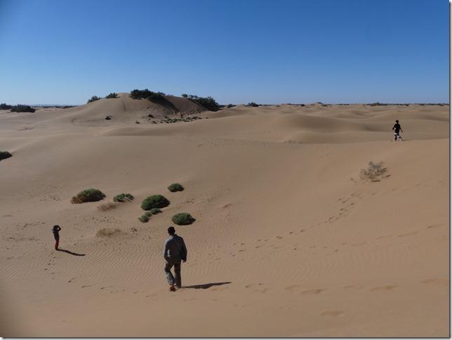 Vallée du Draa - Mhamid- Mbark desert camp (130)