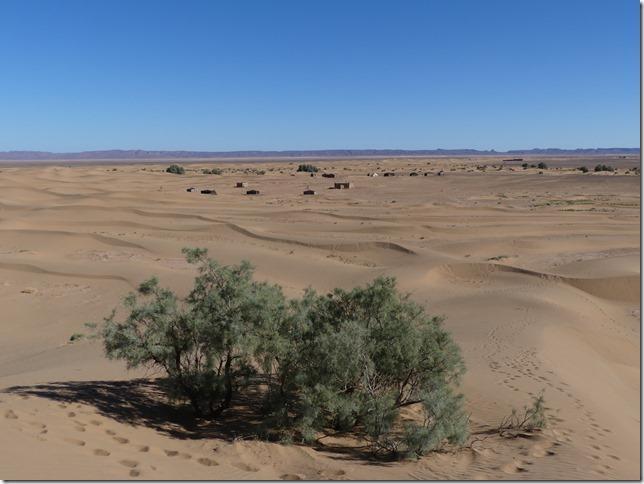 Vallée du Draa - Mhamid- Mbark desert camp (139)
