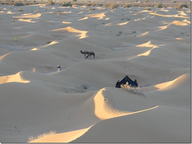 Vallée du Draa - Mhamid- Mbark desert camp (156)