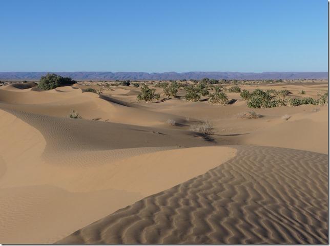 Vallée du Draa - Mhamid- Mbark desert camp (78)