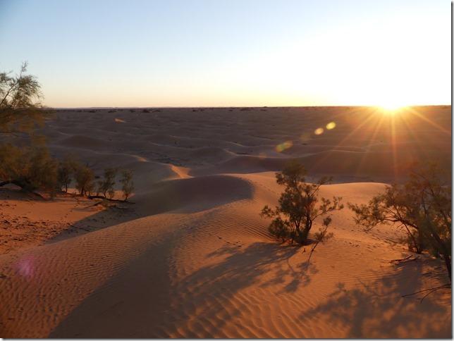 Vallée du Draa - Mhamid- Mbark desert camp (81)