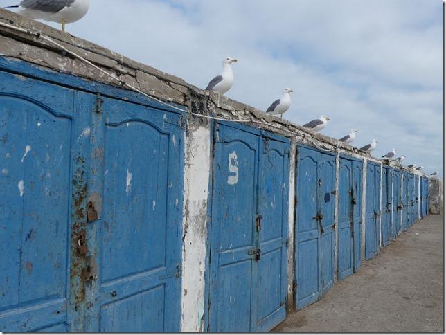 Essaouira (104)