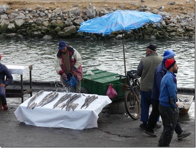 Essaouira (110)