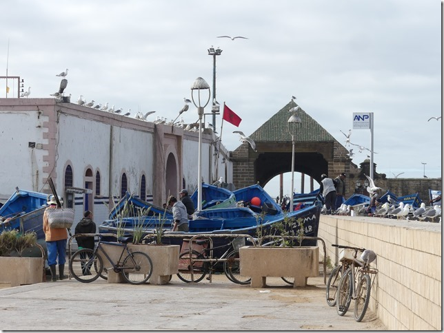 Essaouira (55)
