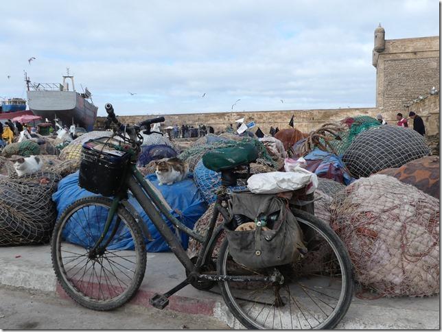 Essaouira (71)