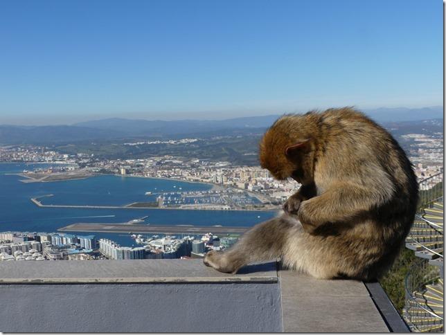 Gibraltar (119)