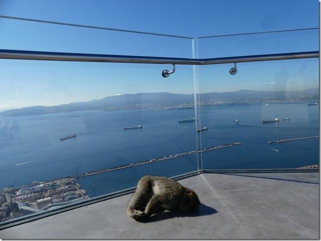 Gibraltar (94)