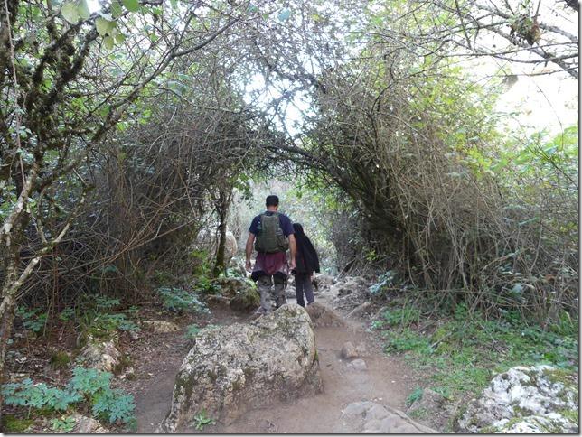 Parc naturel El Torcal (14)