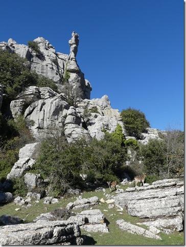 Parc naturel El Torcal (81)