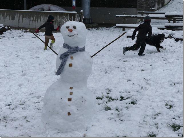 Charmey sous la neige (12)