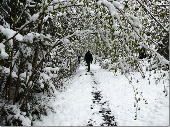 Charmey sous la neige (35)