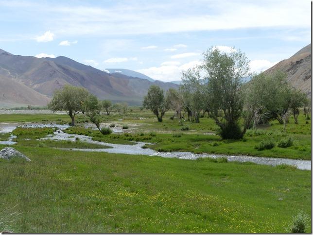 Altaï - piste A2 (139)