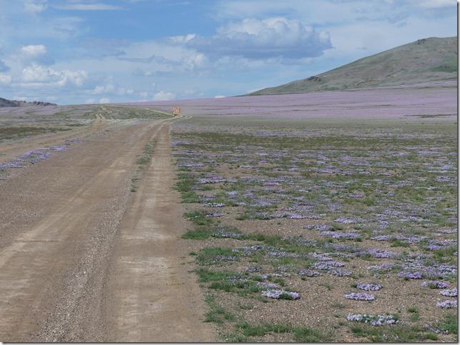 Altaï - piste A2 (202)