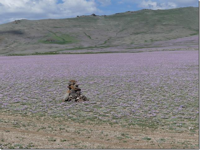Altaï - piste A2 (203)